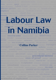 Labour Law in Namibia, PDF eBook